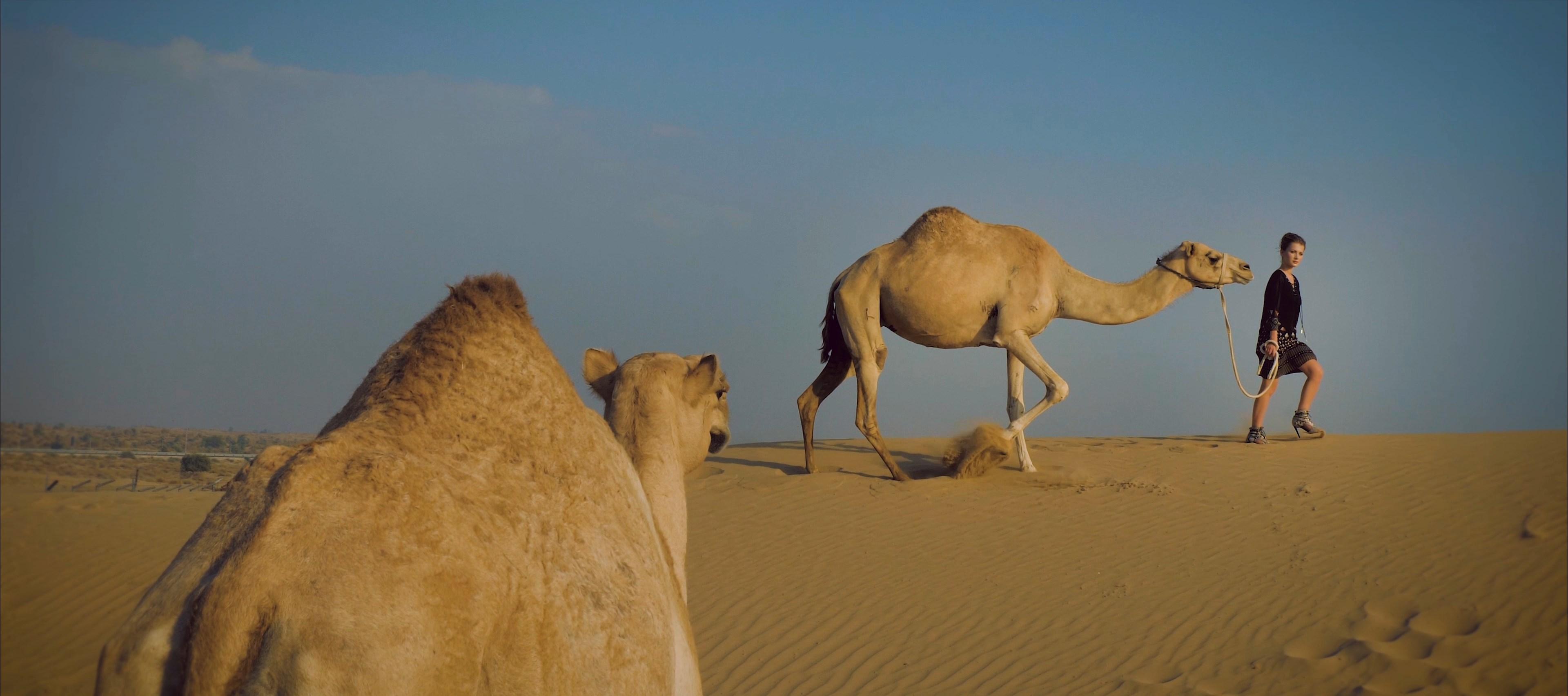 Filmy Reklamowe, Spoty Reklamowe Dubaj